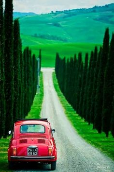 All things Italian - Fiat and cypress-lined street in Tuscany land of dreams--Toscana Italia una ciudad mágica :) Places Around The World, Oh The Places You'll Go, Places To Travel, Travel Destinations, Places To Visit, Around The Worlds, Travel Tips, Beautiful World, Beautiful Places