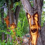 """This is NOT """"Extreme lawn art"""" (which the idiot who originally pinned it called it.) This is tree MUTILATION. Very sick idea. Plus, extremely harmful for the tree. Garden Crafts, Garden Projects, Garden Art, Tree Carving, Wood Carving Art, Weird Trees, Tree Faces, Wood Carving Patterns, Unique Trees"""