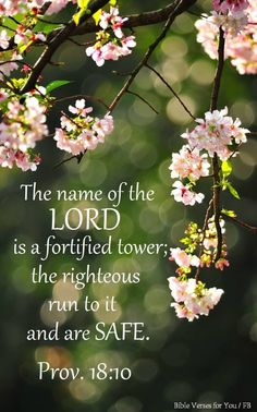 The name of the Lord is a strong tower... Proverbs 18:10