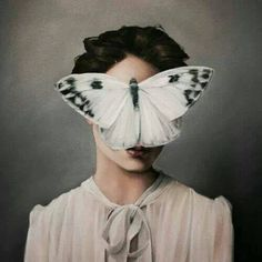 butterflyhead