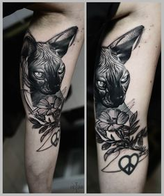 Die 26 Besten Bilder Von Sphynx Tattoos Cats Sphynx Cat Tattoo