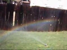Lady is horrified that new wave pollutants cause rainbows in sprinkler water.  Hilarious and pathetic.