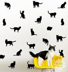 Cat wall decal / Kitty Wall Decal  / 36 Cats by OhongsDesignStudio