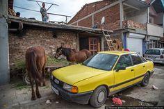 Bulgarian Tzigane (Romale) :: Stolipinovo, Bulgaria, Europe :: photos by MACOS Iberian Peninsula, Europe Photos, Central Europe, Bulgarian, Alsace, Eastern Europe, Romania, Kale, Gypsy