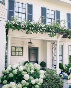 traditional white exterior with arbor, white climbing roses, and hydrangea, black shutters Hydrangea Landscaping, Hydrangea Garden, Front Yard Landscaping, Landscaping Ideas, Shade Landscaping, Flowers Garden, Farmhouse Front Porches, Modern Farmhouse Exterior, Gardens