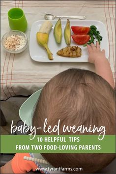 Baby-led weaning (BLW) introduces solid foods to your baby in a way that can help establish a healthy, life-long relationship with food. Here are our top 10 BLW tips to help other parents interested in baby-led weaning. #BLW #babyledweaning #parenting #tyrantfarms Paleo Kids, Healthy Snacks For Kids, Real Food Recipes, Vegan Recipes, Kid Recipes, Long Relationship, Baby Led Weaning, Food Waste, Organic Recipes