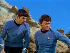 Spock & Bones