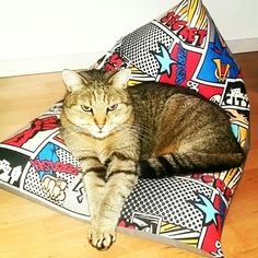 Grisu and his beanbag. Bean Bag, Cats, Happy, Handmade, Animals, Pet Dogs, Gatos, Animales, Hand Made