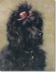 William Luker Jr. - Portrait of a Black Poodle with a Pink Bow 1916 Painting