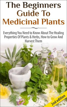 FREE TODAY on Amazon - The Beginners Guide to Medicinal Plants: Everything You Need to Know About the Healing Properties of Plants & Herbs, How to Grow and Harvest Them (Medicinal ... Wild Plants, Healing Properties, Medicinal):Amazon:Kindle Store