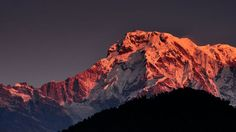 Annapurna Taken from a four-day trek at the Annapurna range, Nepal, during the Christmas season in 2011. Caught this when the sun was rising on December 26, with all-red Annapurna captured.