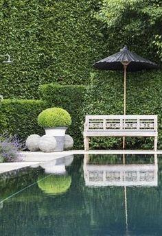 Pool and hedge