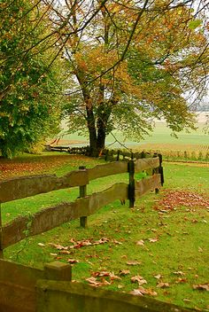 4 Insane Tips and Tricks: Front Yard Fence Wire fence painting beach.Fence For Backyard Garden Ideas wooden fence aesthetic.Metal Fence How To Build. Country Fences, Rustic Fence, Country Farm, Country Life, Country Living, Country Roads, The Farm, Old Fences, Backyard Fences