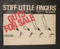 Stiff Little Fingers, The Donkey, Punk Rock