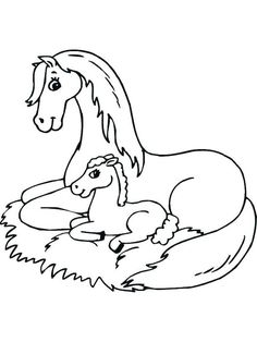 Horse Coloring Pages for Adults . 30 Luxury Horse Coloring Pages for Adults . Realistic Horse Coloring Sheets Fresh Coloring Pages Horses Giraffe Coloring Pages, Farm Animal Coloring Pages, Fall Coloring Pages, Cartoon Coloring Pages, Coloring For Kids, Printable Coloring Pages, Adult Coloring Pages, Free Coloring, Elsa Coloring