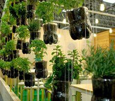 Una muy buena idea para crear tu huerto casero y dar vida a tu hogar.