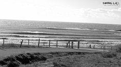 Winds of L.A. - www.surfingla.fr - #surf #LoireAtlantique