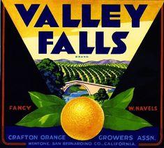 Mentone San Bernardino County Valley Falls Orange Citrus Fruit Crate Label Print