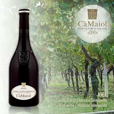 JOEL - Garda D.O.P. Classico Groppello red wine - Historic vineyards