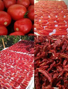Domatesin bol ve lezzetli, havaların sıcak ve güneşli olduğu bu günlerde domates kurusu yapabilirsiniz. Mevsiminde kuruttuğunuz domateslerle yıl boyunca çok lezzetli kahvaltılıklar, salatalar ve yemekler hazırlayabilirsiniz. Üstelik kurutulmuş domates tazesine göre daha yüksek oranda likopen içeriyor. Likopen kansere karşı koruma sağlayan ve güçlü antioksidan özelliği olandomatese kırmızı rengini veren pigmenttir. Evde hazırladığınız katkı maddesi içermeyen domates kurusunu çok…