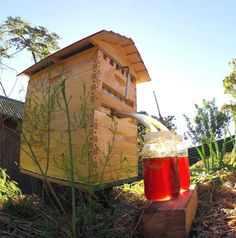 A nifty Australian invention makes the collection of honey from the combs in a hive a simple matter of turning on a tap. Honey flows out via a pipe.