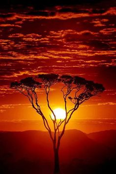 Beautiful sunset, Africa.