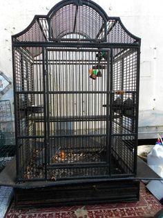 nice bird cages