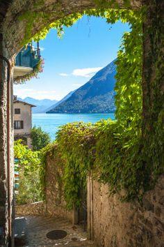 Ivy Street, Lake Lugano, Switzerland.