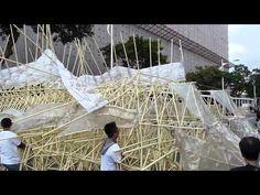 100-11-25 仿生獸(Animaris Siamesis)街頭野放 - YouTube