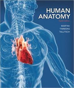 Human anatomy physiology 9th edition pdf download httpwww test bank human anatomy 8th edition by frederic h martini fandeluxe Image collections
