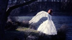 """""""Heading Home Again"""" 