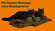 Die Erfinder des Kommunismus - 17 - Miau-miau-Montagswitz 2016