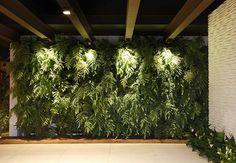 O painel recheado com samambaias-do-amazonas se destaca com a presença dos spots quadrados nas vigas de madeira Evelyn Müller / Casa e Jardim