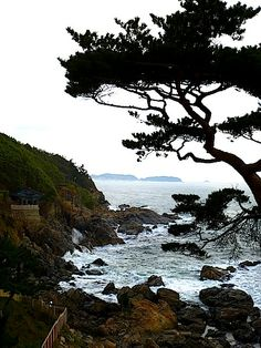 gangneung, south korea, 10-13