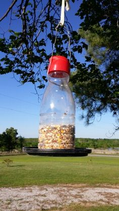 This is a bird feeder I made out of a coffee creamer bottle and a plastic lid from a empty coffee container.  I drilled holes at various places very near the bottom of the bottle for the seed to come out.  The lid is attached with a bolt and nut through the center of the lid and bottle.  Drill holes on opposite sides near the top of the container and attach something to hang it with.  I used a plastic coated wire and a cord for an adjustable hanger.  Creations by N. Romine