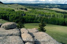 by Robin Karpan Canadian Forest, Capital Of Canada, Rocky Hill, Camping 2017, Saskatchewan Canada, Cypress Hill, Canadian Travel, Best Places To Live, Rock Formations