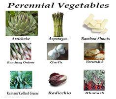 perennial-vegetables Straw Bale Gardening, Gardening Tips, Perennial Vegetables, Dream Garden, Permaculture, Garden Projects, Vegetable Garden, Garden Landscaping, Outdoor Gardens
