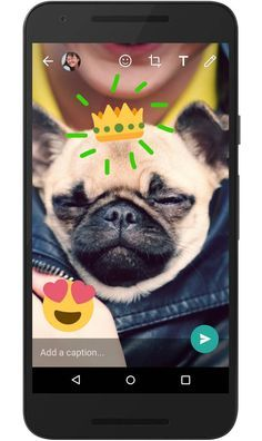 Whatsapp führt Snapchat-Funktionen ein: Sticker und Texte für Fotos kommen!