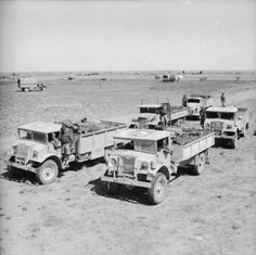 Trucks carry supplies of petrol and ammunition to the front line. Tunisia, 30 March 1943.
