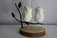 Pottery Barn Magnetic Owl Salt & Pepper Shakers Set  #PotteryBarn