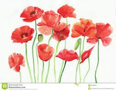 Image result for watercolour california poppies