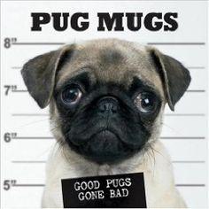 Pug Mugs: Good Pugs Gone Bad [Hardcover]