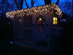 Light up your backyard chicken coop at Christmas time! Backyard Coop, Backyard Chicken Coops, Diy Chicken Coop, Chickens Backyard, Christmas Lights, Christmas Time, Chicken Chick, Photo Contest, House Styles