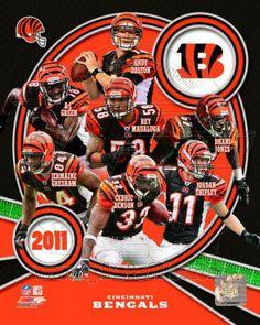 Cincinnati Bengals 2011 Team Composite