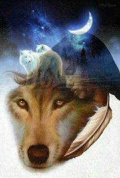 Wolves And Women, Spiritual Animal, Fantasy Wolf, Silhouette Painting, Wolf Quotes, Wolf Wallpaper, Wolf Love, Wolf Pictures, Wolf Design