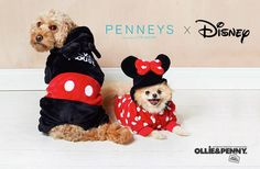 Penneys x Disney Pet Collection + More! - Ollie & Penny - ★ Musings of two spoilt Sausage Dogs! ★ Simba Toys, Disney Lines, Ceramic Dog Bowl, Woody And Buzz, Toy Story Alien, Lion King Simba, Pet Dogs, Pets, Sausage Dogs