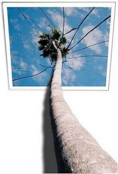 ilusiones opticas de fotografias
