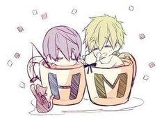 Chibi cups ... Free! - Iwatobi Swim Club, haruka nanase, haru nanase, haru, nanase, free!, iwatobi, makoto tachibana, tachibana, makoto, cat