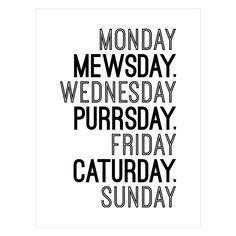 Happy Purrsday!! #Thursday
