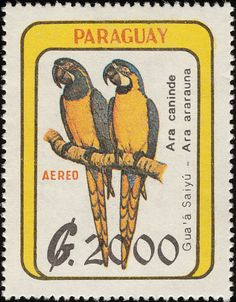 Blue-and-yellow Macaw stamps - mainly images - gallery format